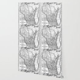 Vintage Map of Wisconsin (1859) BW Wallpaper