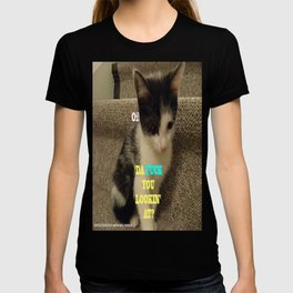 Sophia The Cat #3 [Tex's Owner] T-shirt