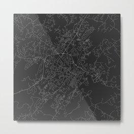 Charlottesville - Black and White Metal Print