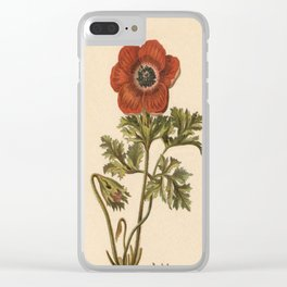 1800s Encyclopedia Lithograph of Anemone Flower Clear iPhone Case