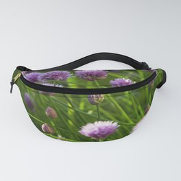 beautiful chive flowers in evening light Fanny Pack