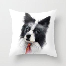 Harry Spotter Throw Pillow