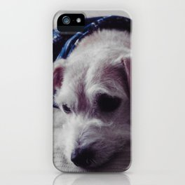 After grooming iPhone Case