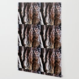 Ancient olive tree wood close-up Wallpaper