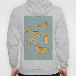 Various cats Hoody