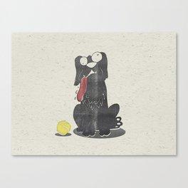 Stupid Dog Canvas Print