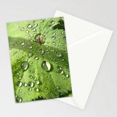 Alchemilla Stationery Cards