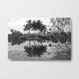 Palm Island  Black&White Metal Print