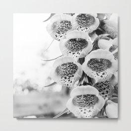 Black & White Foxglove Metal Print