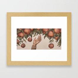 Apple Picking Framed Art Print