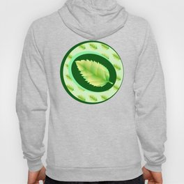 Green leaf of the tree. Leaf linden or apple for background or a logo or a pattern. Hoody