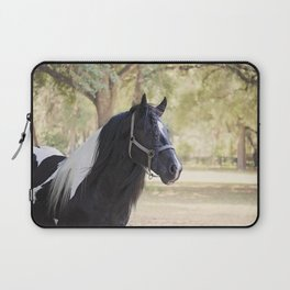 Stunning Gypsy Vanner in Color Laptop Sleeve