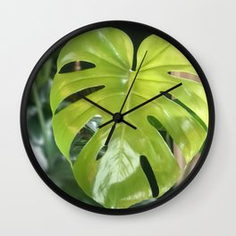Coming fenestrate at you  Wall Clock