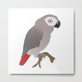 Cute African grey parrot vector Metal Print