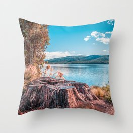 Lake Te Anau with big tree stump on the foreground, Fiordland, South Island, New Zealand Throw Pillow