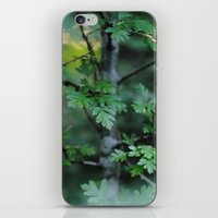 oregon iPhone & iPod Skins featuring Oregon by Megan Simonson Photography