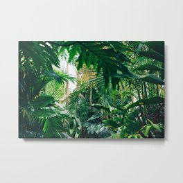 Greenery Jungle (Color) Metal Print