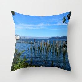 Columbia River Scene Throw Pillow