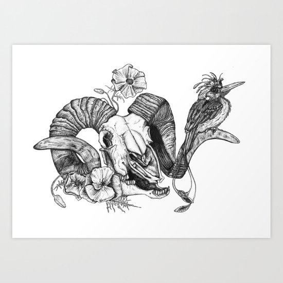 The ramskull and bird Art Print