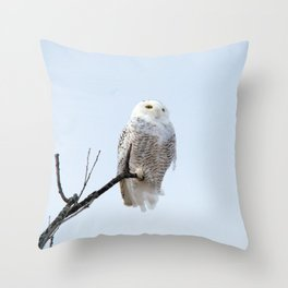 Lofty Vision (Snowy Owl) Throw Pillow