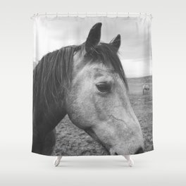 Horse Print in Black and White Shower Curtain