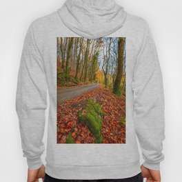 Country Path Autumn Hoody