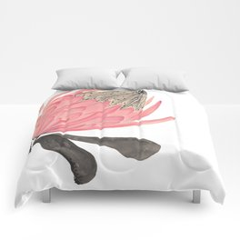 Protea Stripes Comforters