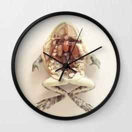 The Anatomical Frog Wall Clock