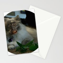 Nicolas Cage Cat Wants Nip Stationery Cards