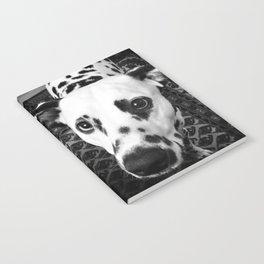 Daso the Dog Notebook
