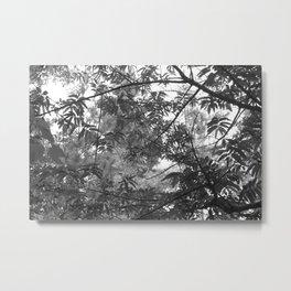 simple and beautiful Metal Print