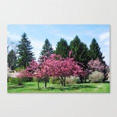 Crab Apple Trees Canvas Print