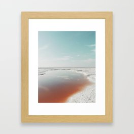 Salt Marsh: Alviso, California Framed Art Print