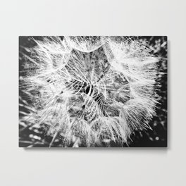 Entrancement Metal Print