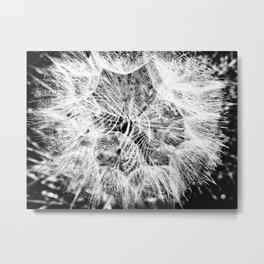 Entrancement Metal Print