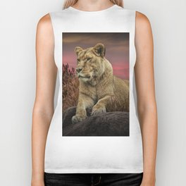 African Female Lion in the Grass at Sunset Biker Tank