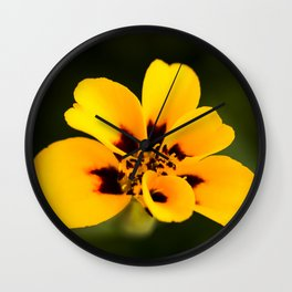 Jaguar Marigold Wall Clock