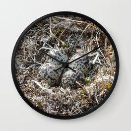 Bird Nest (Pacific Golden Plover) Wall Clock