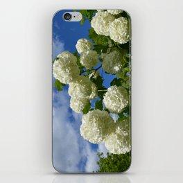 Granny's Snowballs iPhone Skin