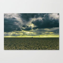 Tempestatem Canvas Print