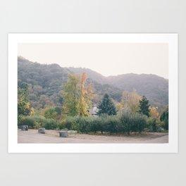 Fall in California Art Print