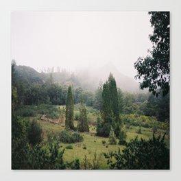 (fog meadow) Canvas Print