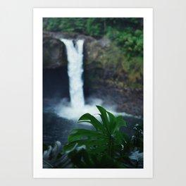 Hawaii Falls Art Print