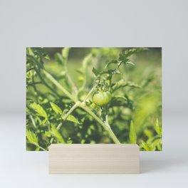 Green with Envy Mini Art Print