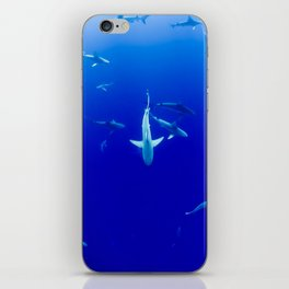 Sharks! iPhone Skin