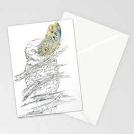 Miss Owl and Butterfly friend Stationery Cards
