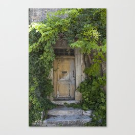 Provence Door covered with green vines Canvas Print
