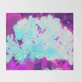 Robin's Egg Blue Peppermint Twist Phlox Flowers Throw Blanket
