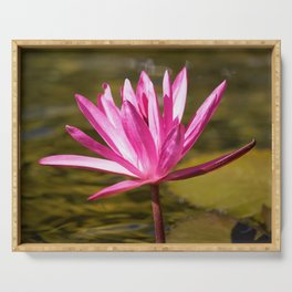 Peace & Hope via Waterlily by Reay of Light Serving Tray