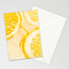 Orange slices in a cocktail Stationery Cards